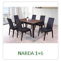 NARDA 1+6